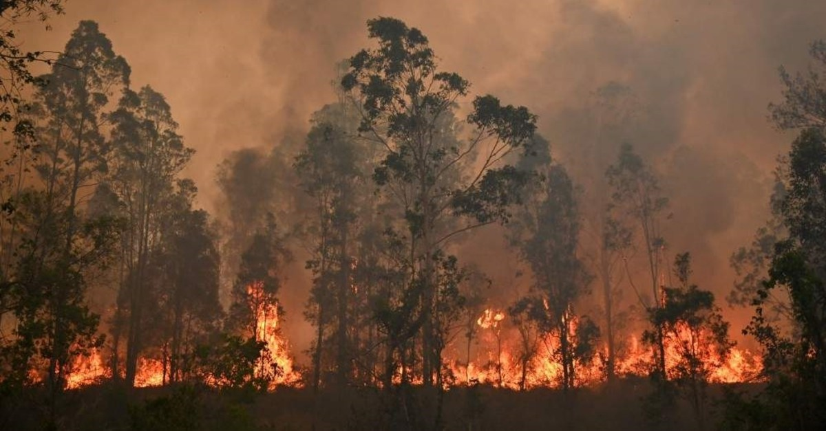 A fire rages in Bobin, 350 kilometers north of Sydney, New South Wales, Nov. 9, 2019. (AFP Photo)