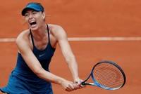 Sharapova's book adds fire to Williams French Open clash