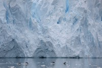 UK, US launch joint research to study risks of giant Antarctic glacier