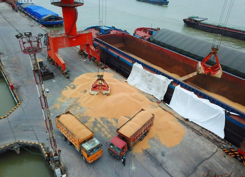 Workers load imported soybeans onto trucks at a port in Nantong, Jiangsu, China, April 4.