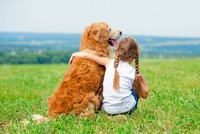 A lovely pet may be the best way to bring an end to sibling fighting at home as a new study by the University of Cambridge suggests that children can get more satisfaction from relationships with...