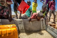 A social media campaign launched Wednesday is urging people to help millions of Somalis on the brink of death as a result of the ongoing famine by filling up a Turkish Airlines plane with...