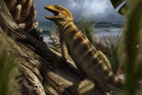 240 million-year-old 'mother of all lizards' discovered in Italian Alps