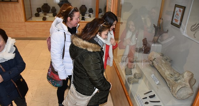 متحف في شرق تركيا يعرض عظمة ديناصور عمره 65 مليون سنة