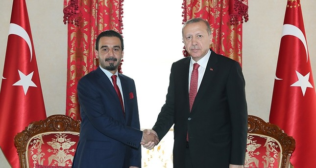 President Recep Tayyip Erdoğan meets with Iraqi Parliament Speaker Mohammed al-Halbousi. (AA Photo)