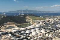 Petkim's 100 percent raw material requirement will be met after the State Oil Company of Azerbaijan's (SOCAR) Turkey Aegean Refinery (STAR) is commissioned, Petkim Holding Director General Anar...