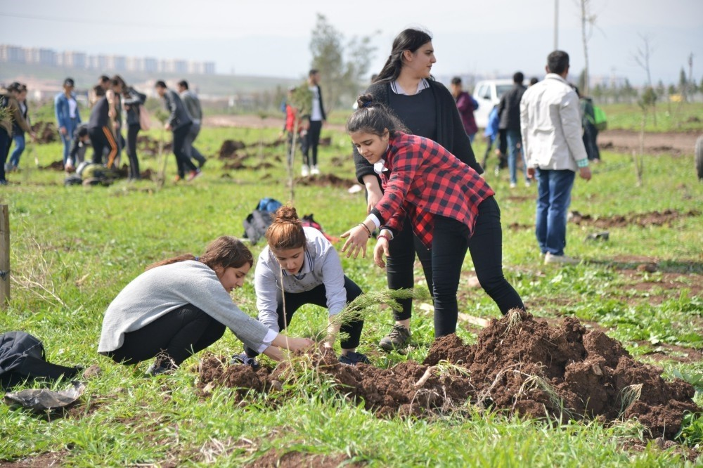 Students plant trees in southeastern city of Diyarbaku0131r's Kayapu0131nar district for a new forest.