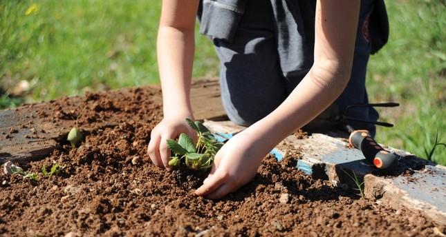 Botanical garden brings children closer to nature