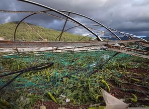 Последствия обрушившегося на Анталью торнадо