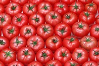 Israel not to levy customs duty on tomatoes imported from Turkey
