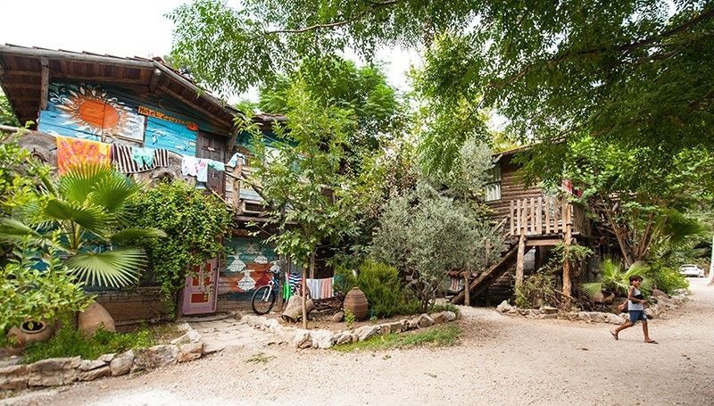 5 Treehouses, Legends and Endangered Species