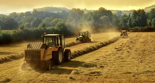 اتفاق تركي قطري لتعزيز التعاون الزراعي