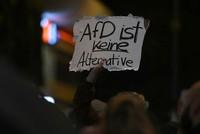 In Berlin, in Köln, in Hamburg: Mehr als 1000 Menschen sind deutschlandweit gegen die AfD auf die Straße gegangen. In der Hauptstadt wurden vereinzelt Demonstranten festgenommen.  Die AfD feiert...