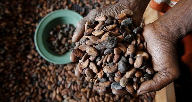 World may run out of coffee, chocolate, potatoes by 2055