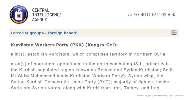 CIA officially recognizes PYD as terror group PKK's Syrian wing