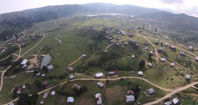 The Acelle Plateau in Sakarya Province,Turkey (AA Photo)