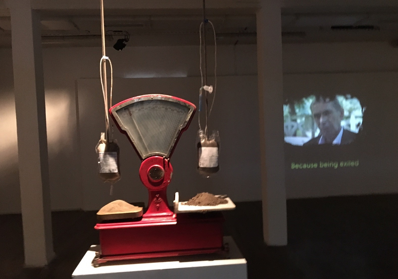 Circulatory Shock is the centerpiece at Deletion Makrs, a poetic metaphor of blood and soil in the midst of history and memory.