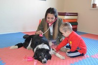 Love as a 4-legged word: Rehab dog a hero for children with Down Syndrome, autism in Turkey