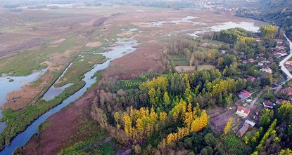 pOffering picturesque autumn scenery, the Efteni Lake Wildlife Protection Area and Bird Paradise in northwestern Turkey's Düzce province amazes its visitors with over 150 bird species and various...