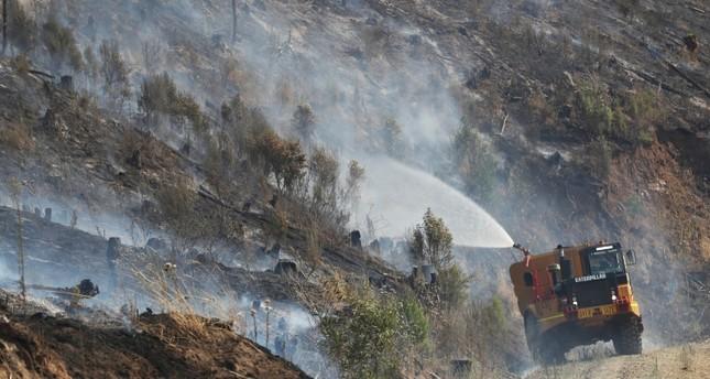 حرائق الغابات في أستراليا تدمر 30 منزلا وتلتهم 100 ألف هكتار