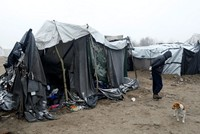 Hungary to put asylum seekers and immigrants in container camps