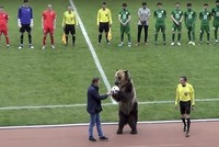 Bear performance at Russian soccer match angers rights groups