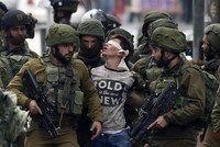 Fawzi al-Juneidi, who became a symbol last month of Palestinian protests against the recent U.S. decision to recognize Jerusalem as Israel's capital, is set to visit Turkey on Tuesday where he will...