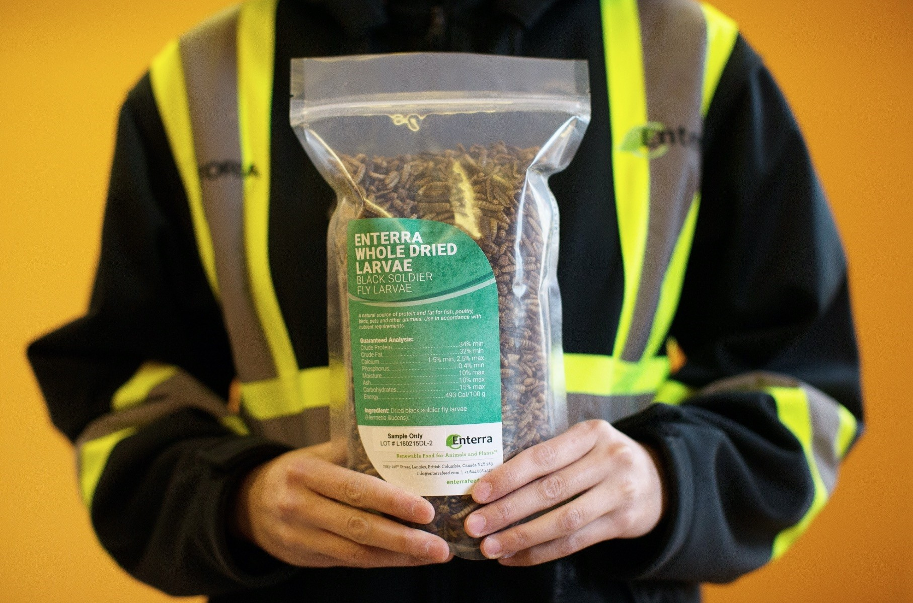 Black soldier fly larvae in its finished packaging is pictured at the Enterra Feed Corporation in Langley, British Columbia.