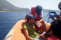 عملية إنقاذ مهاجرين قبالة الشواطىء التركية (أرشيف)
