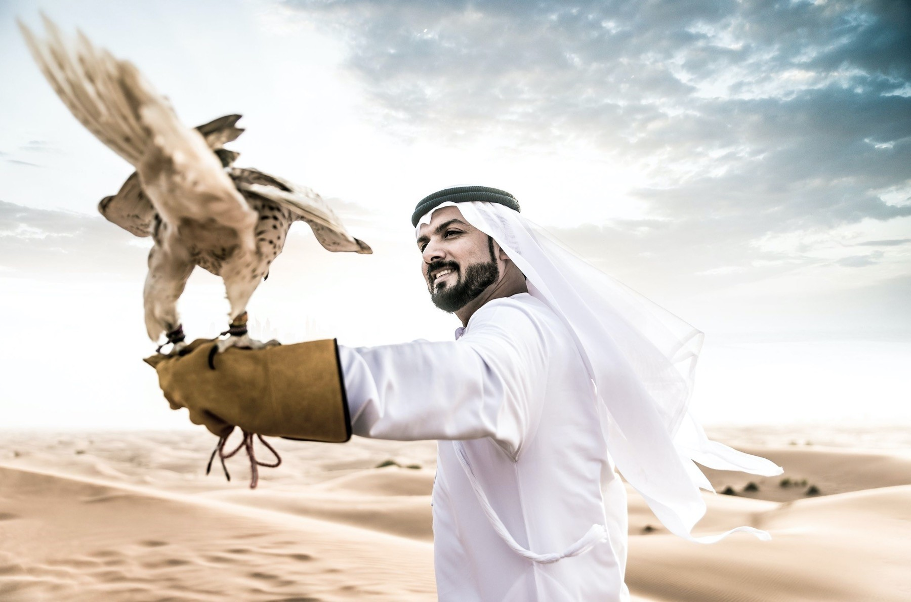 Predatory falcons, worth as much as TL 1 million are expected to put on a great show at the festival.