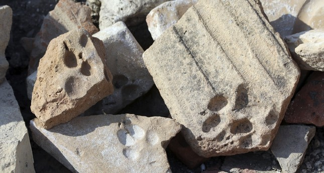 Cat and dog paw traces on brick and roof tiles that are nearly eight centuries old have been found at the Kadıkalesi archaeological site.