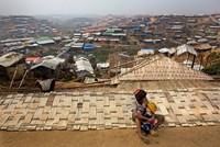 Die geplante Rückführung hunderttausender Rohingya-Flüchtlinge aus Bangladesch nach Myanmar verzögert sich. Die Umsiedlung könne nicht wie geplant am Dienstag beginnen, sagte Abul Kalam Azad von...