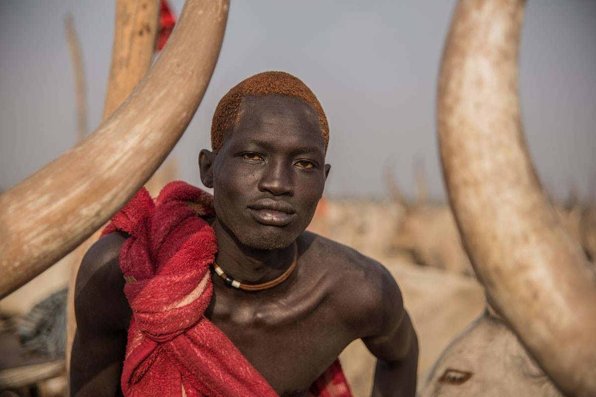 South Sudan's cattle grazers in pictures