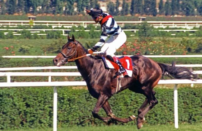 Bold Pilot: Legendary jockey remembers his famed companion