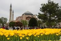 مسجد ومتحف آياصوفيا، من أهم المعالم السياحية في إسطنبول (أرشيف)