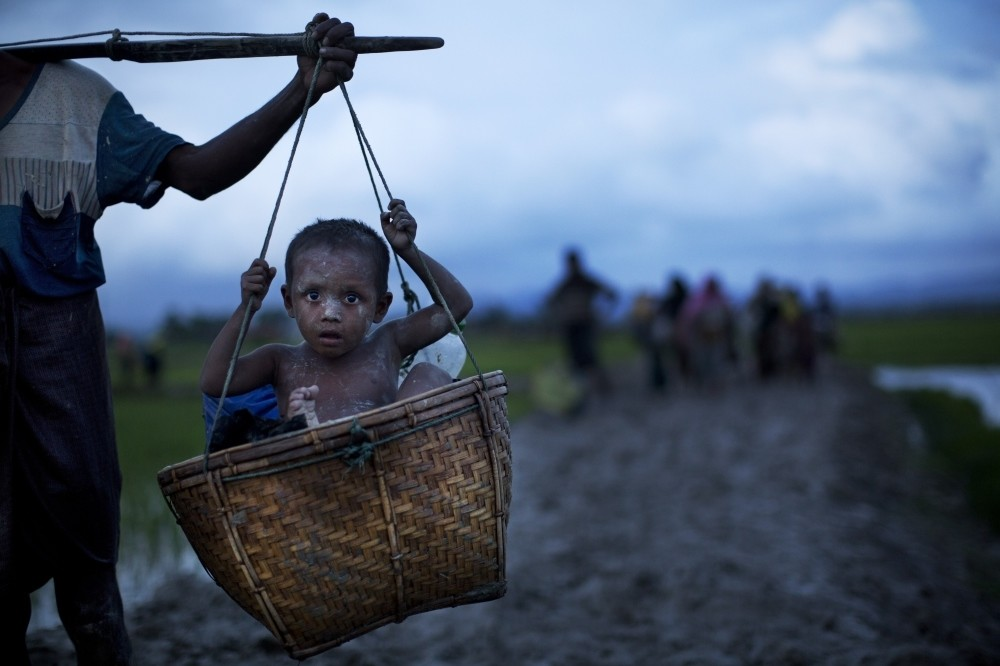A Rohingya child from Myanmar is carried in a basket past rice fields after crossing over to the Bangladesh side of the border near Cox's Bazar's Teknaf area, Sept. 1.