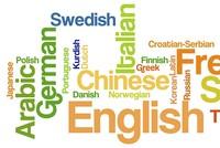 تواجه أكثر من ألفين و500 لغة من أصل 7 آلاف و100 لغة يتحدث بها البشر حول العالم، خطر الانقراض.  ووفقًا للمعلومات التي جمعها مراسل الأناضول من بيانات الأمم المتحدة، فإن العالم خلال القرن الميلادي...
