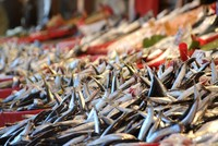 Hamsi season: Turkey's national fish returns in many forms