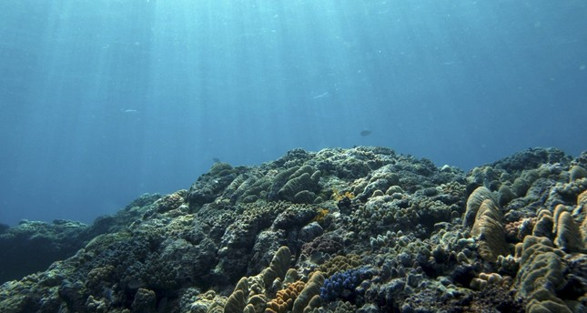 Micro plastic on ocean floor heavy with toxic substances
