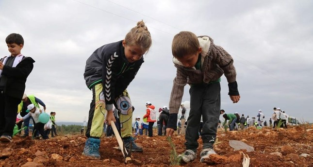 Children in Turkey's southern Mu?la province plant saplings as part of the National Forestation Day organized by the Ministry of Agriculture and Forestry on Nov. 11, 2019 AA Photo