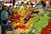 Laut dem Türkischen Statistikinstitut (TurkStat) stieg der türkische Verbraucherpreisindex (VPI) im Juli um 0,15 Prozent, jedoch fiel die jährliche Inflation von 10,9 Prozent im Juni, im Juli auf...