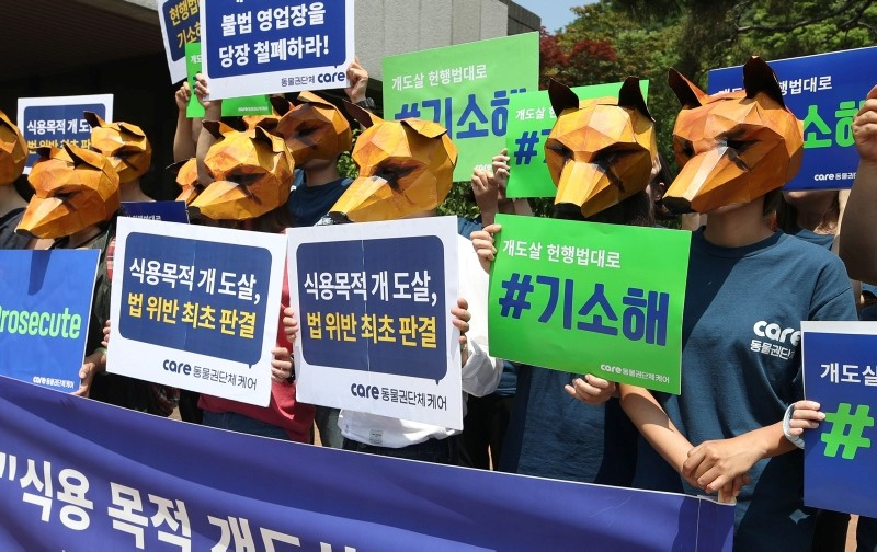 This picture taken on June 20, 2018 shows South Korean animal rights activists wearing dog-shaped masks outside a court in Seoul as they rally in support of an anticipated a court decision declaring killing dogs for meat is illegal. (AFP Photo)