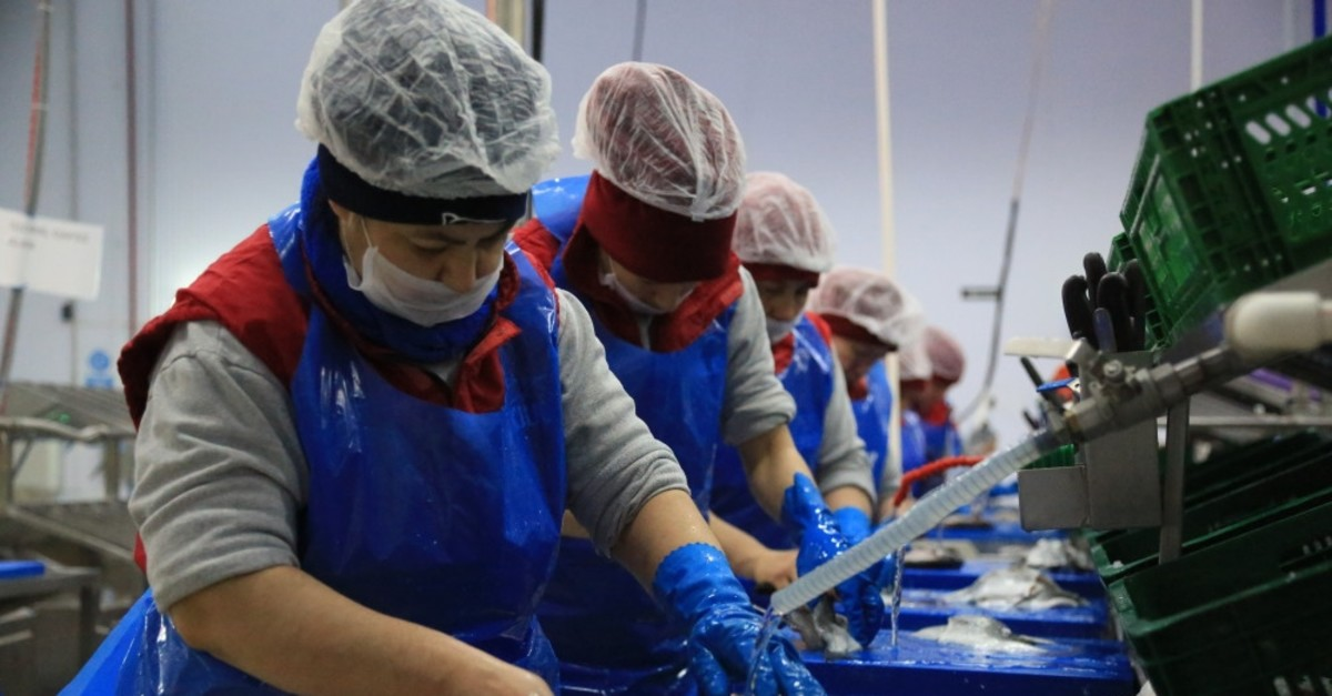 Some 118,954 tons of aquaculture products were exported during the season covering the period of Sept. 1, 2018, to April 15, 2019.