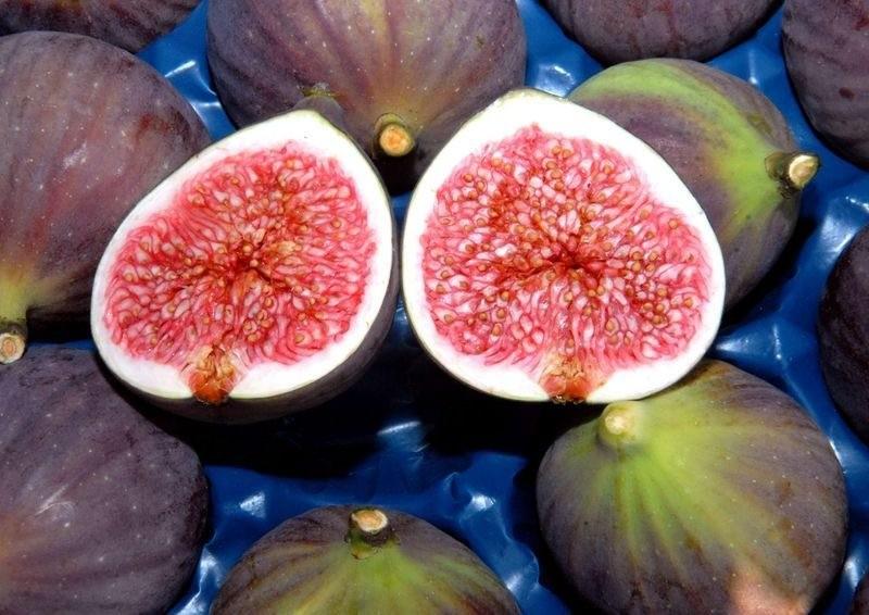 Bursa black figs. (IHA Photo)