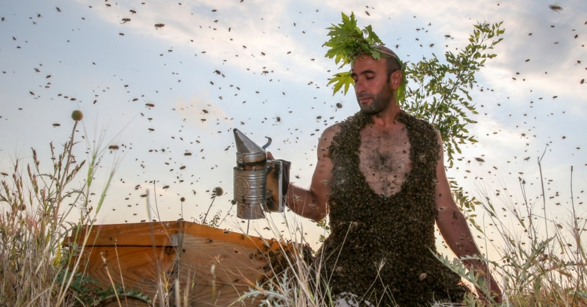 Abdulvahap Semo attracted bees weighing 10 kilos in total in his third try on June 21, 2019.