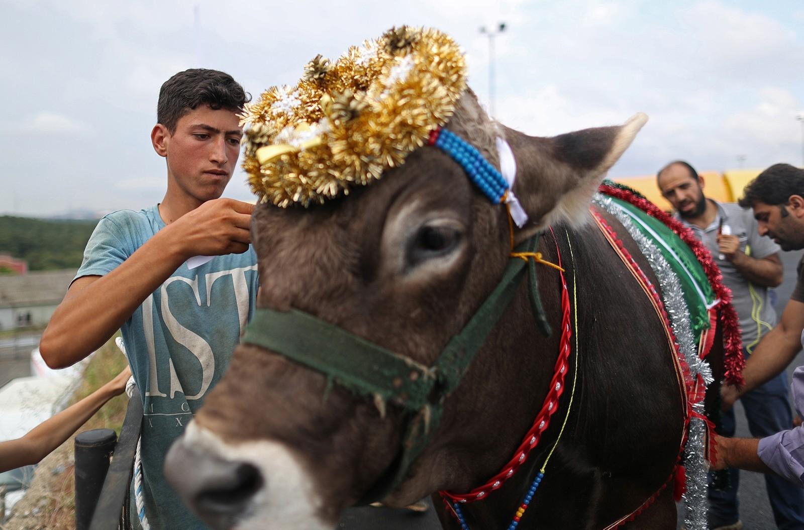 Турция готова к празднованию Курбан-байрама