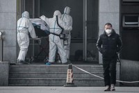 China reports 17 new cases in virus outbreak