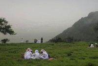 On the eastern edge of the Arabian peninsula, a region disappears under sky-wide blankets of fog as the desert blooms green.  This is the Omani monsoon: a phenomenon that draws hundreds of...