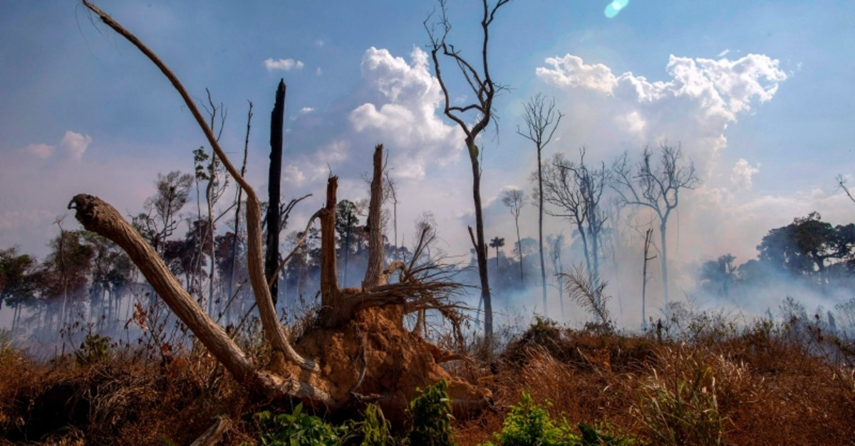 View of a burnt area after a fire in the Amazon rainforest near Novo Progresso, Para state, Brazil, on August 25, 2019. (AFP Photo)
