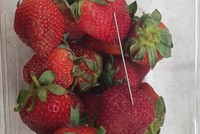 Australia's Queensland on the hunt for strawberry saboteurs using needles